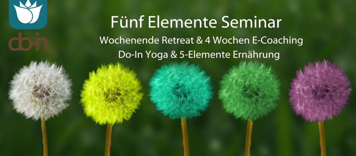 5 Elemente Seminar